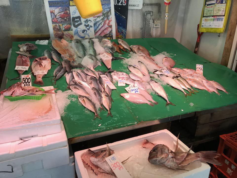 福岡で水揚げされた新鮮な魚介