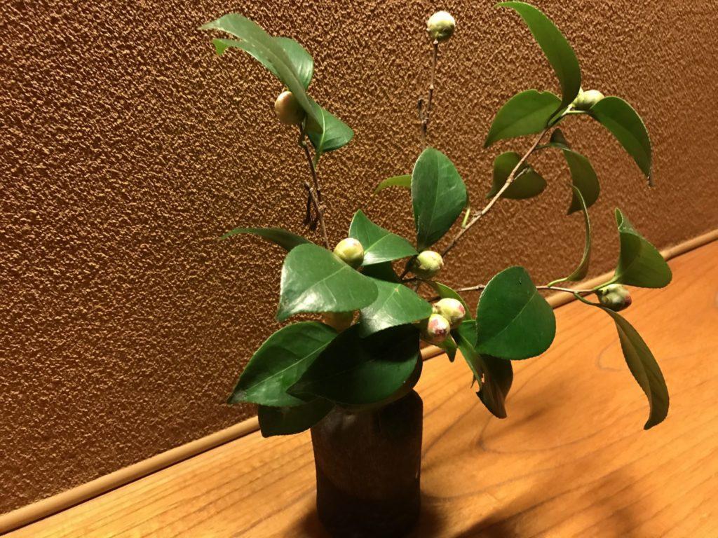 ところどころに可愛い植物が飾られてます
