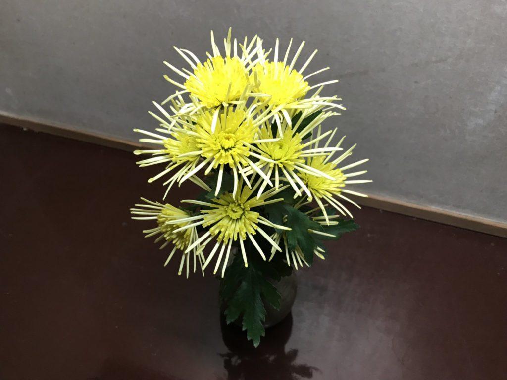 廊下にも可愛らしい生け花が